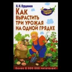 Как вырастить три урожая на одной грядке Н.И.Курдюмов (Курдюмов)