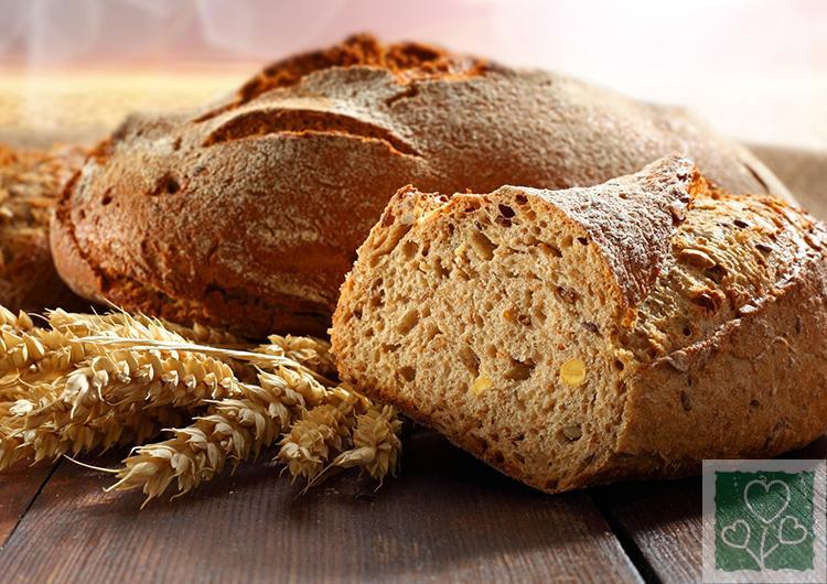 Цельнозерновой хлеб  для здоровья (Хлеб   всему голова, Здоровый образ жизни)