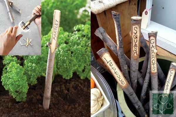 Варіанти маркування рослин (Огород, Обмен опытом)
