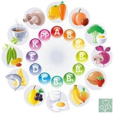 Основные пищевые источники витаминов (Здоровый образ жизни, Без рубрики)