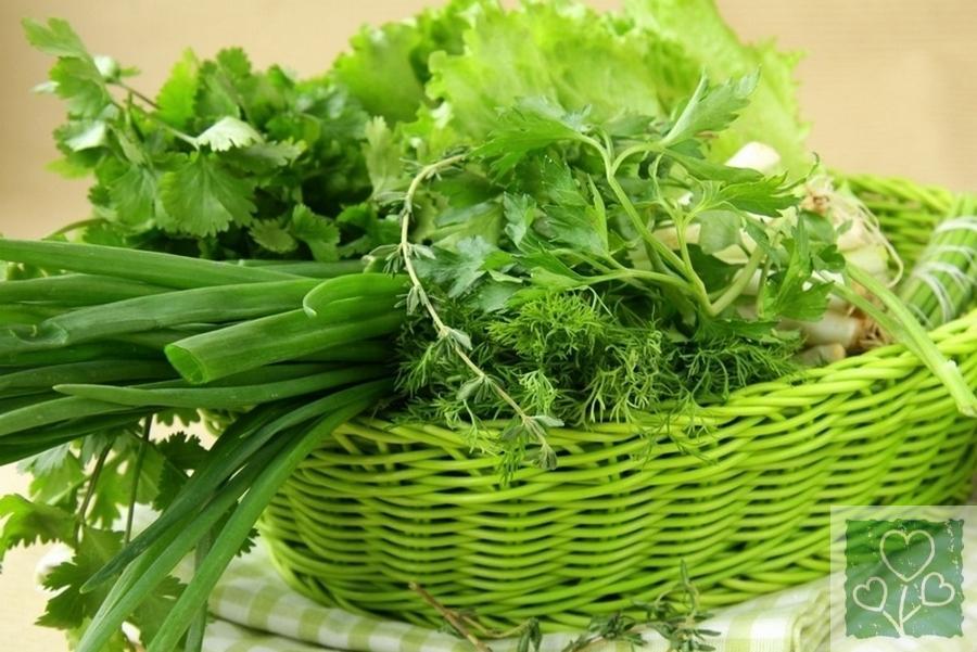 Спосіб заморожування зелені (Рецепты, Обмен опытом)